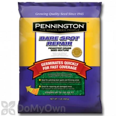 Pennington Bare Spot Repair Seed Mixture