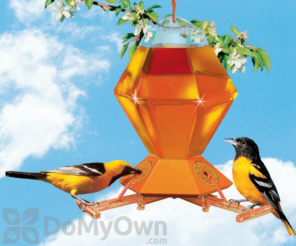 com best garden woodlink house bird metal amazon wild outdoor feeder dp oriole feeders