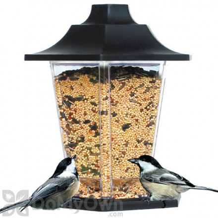 Perky Pet Carriage Bird Feeder 1.5 lb. (310)