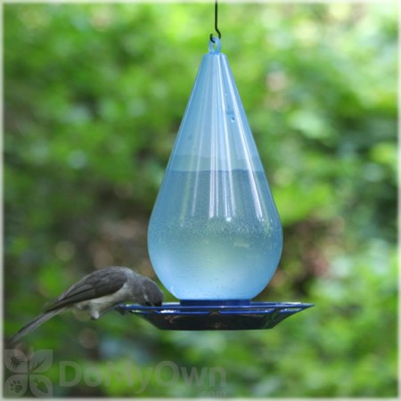 Perky Pet Droplet Bird Waterer 1 qt. (781)