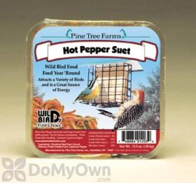 Pine Tree Farms Hot Pepper Suet 1203 - SINGLE