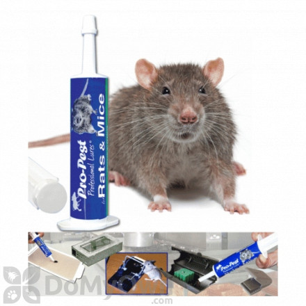 Pro - Pest Rodent Lure