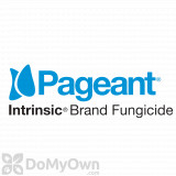Pageant Intrinsic Brand Fungicide - 12 Ib - California