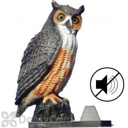 Bird Scare Devices For Scaring Birds Away