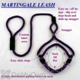 Soft Lines Martingale Dog Leash - 6 Foot x 3 / 8\