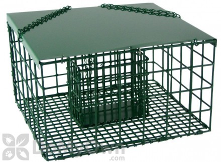 Songbird Essentials Squirrel Resistant Suet Palace Bird Feeder (SE6000)