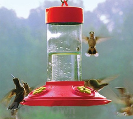 Songbird Essentials Dr. JB  All Red Feeder with Yellow Flowers Clean Hummingbird Feeder 16 oz. (SE6018)