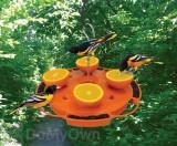 Songbird Essentials Ultimate Oriole Feeder (SE905)
