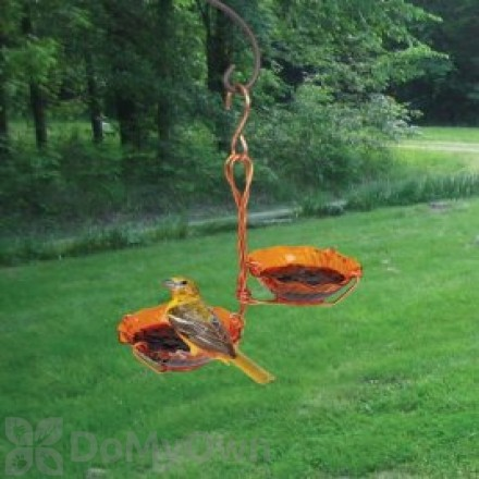 Songbird Essentials Copper Double Cup Oriole Jelly Feeder (SEHHORDC)