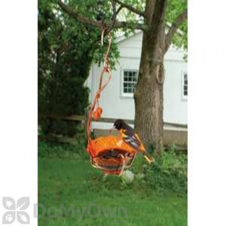 Songbird Essentials Copper Oriole Jelly Feeder Single Cup (SEHHORSC)