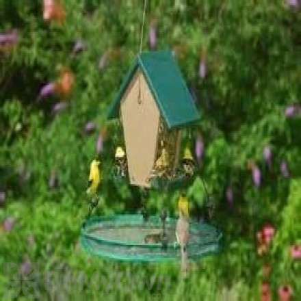Songbird Essentials Seed Hoop for Bird Feeder 16 in. (SEIA30034)