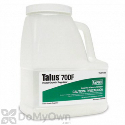 Talus 70DF Insect Growth Regulator