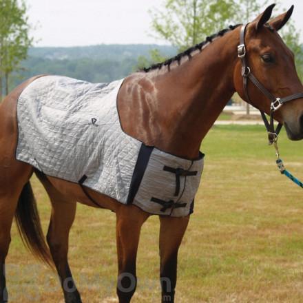 TechNiche HyperKewl Evaporative Cooling Horse Blanket - Silver