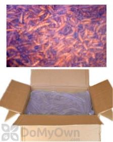 Unipeck of America Bulk Dried Mealworms (UPBULK1)