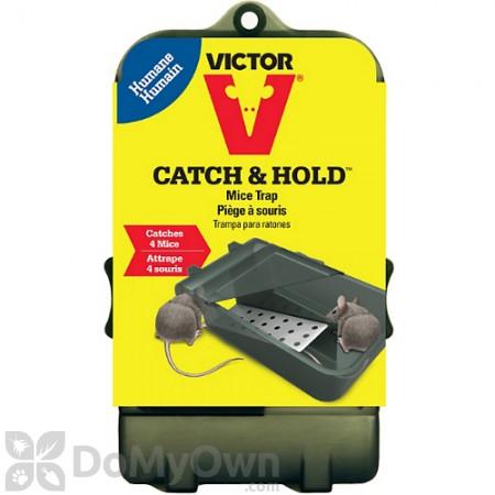Victor Multi Catch Mouse Trap