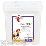 Vita Flex DMG 3000 Concentrate