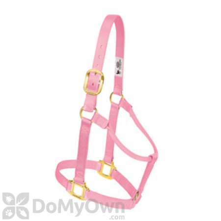 Weaver Leather 1 in. Original Non - Adjustable Halter for Yearling Horse - Pink