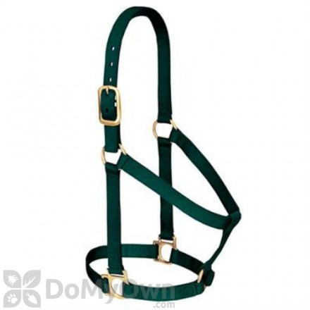 Weaver Leather Basic Non - Adjustable Halter 1 in. for Small Horse or Weanling Draft - Hunter Green