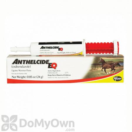 Anthelcide EQ Paste