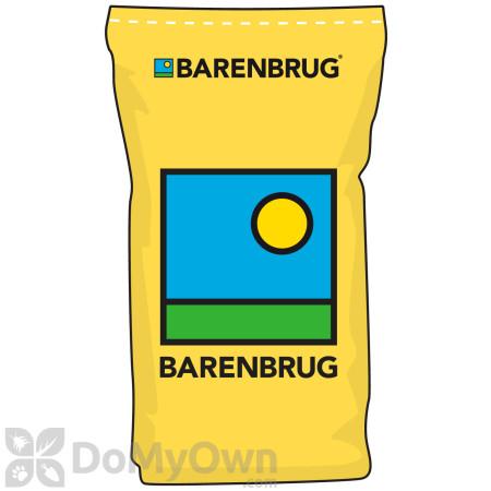 Barenbrug Daikon Radish with Yellow Jacket