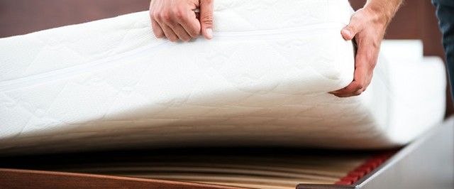 How to Prevent Bed Bugs (Prevent)