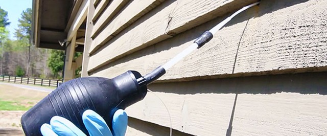 How to Get Rid of Carpenter Bees (Wood Bees) (Treat)