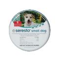 Dog Flea, Tick & Pest Control