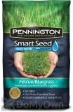 Pennington Smart Seed Fescue / Bluegrass Mix