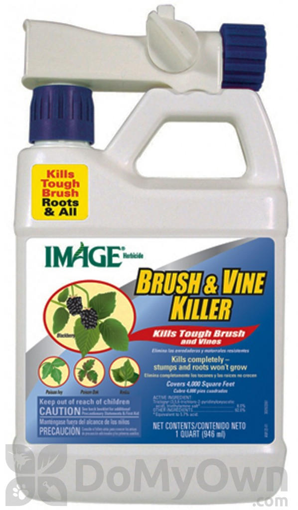 Image Brush Vine Killer Ready To Spray