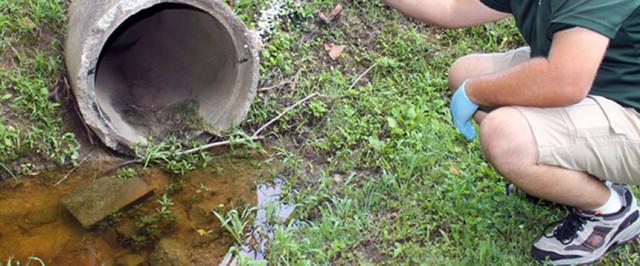 Mosquito Control Amp Killer Sprays Amp Products Domyown Com