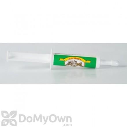 Oralx Lactinex