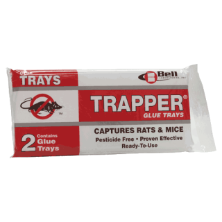 Rat Glue Traps