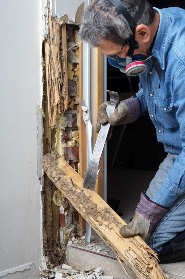 Image of a man removing termite damage from a house
