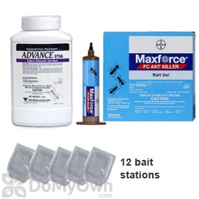 Complete Ant Kit
