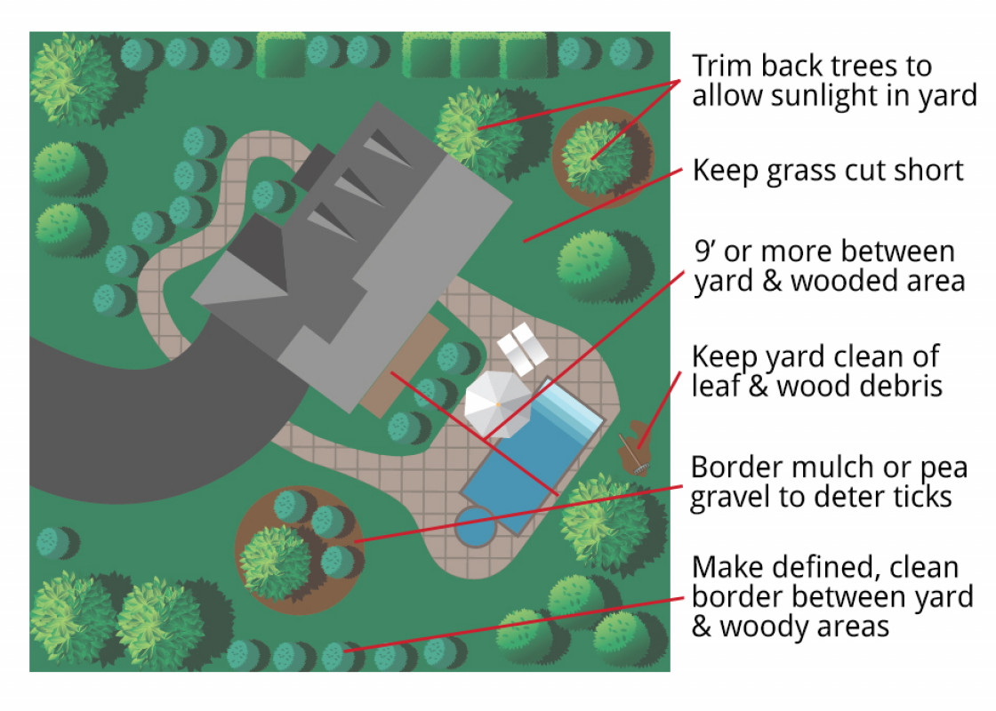 diagram of where to clean so as to prevent ticks