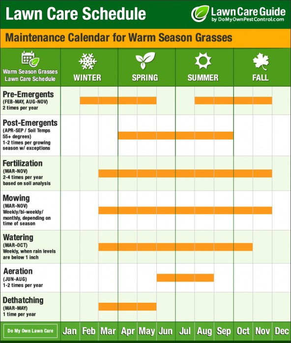 Billbug prevention guide how to prevent billbugs in your for Lawn maintenance schedule