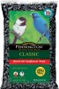 Pennington Seed Black Oil Sunflower Bird Seed 50 lb