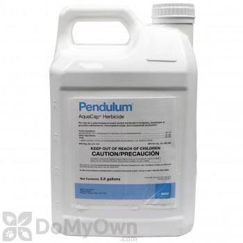 Pendulum AquaCap - 2.5 Gallon