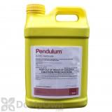 Pendulum 3.3 EC - 2.5 Gallons