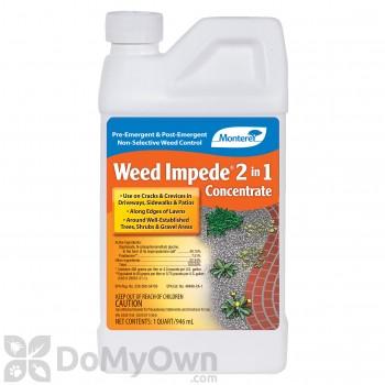 Monterey Weed Impede 2 in 1 Herbicide - Quart