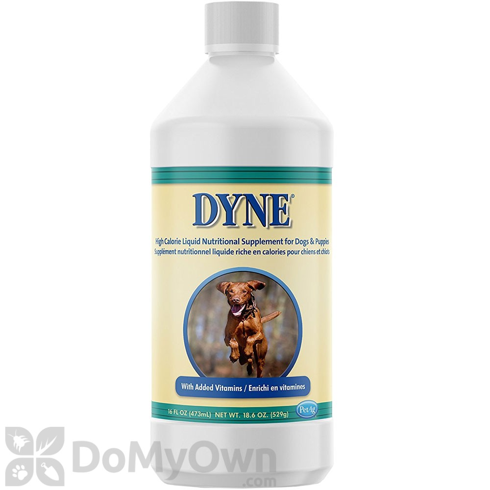 Dyne Supplement For Dogs Reviews