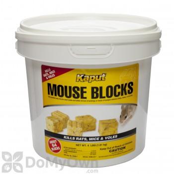 Kaput Mouse Blocks