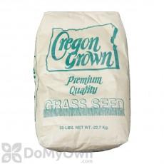Annual Rye Grass Seed