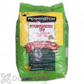 Pennington Kentucky 31 Tall Fescue 99.9 WF
