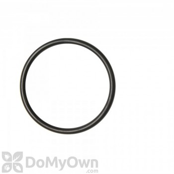 Chapin Replacement Pump O-Ring (6-8114)