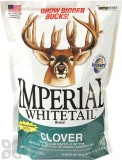 Imperial Whitetail Clover