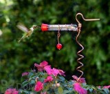 Songbird Essentials Flower Pot One Tube Hummingbird Feeder (SEHHFPF1)