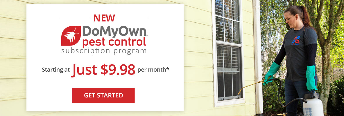 Take the guesswork out of your perimeter pest control.
